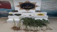 Antakya ve Defne'de 22 kök dişi hint keneviri ile 444 gram kubar esrar yakalandı
