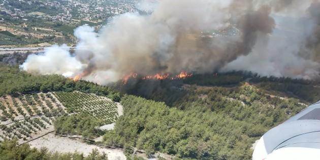 Dörtyol'da orman yangını