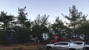 Belen İlçesindeki Orman yangını büyümeden söndürüldü