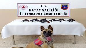 Jandarma Altınözü Hacıpaşa'da 2 silah kaçakçısında 7 tabanca yakaladı